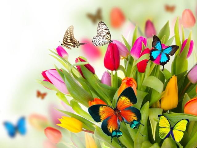 Qual flor mais combina com você?
