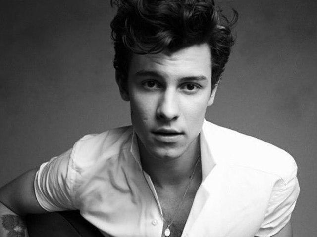 Você é mesmo fã do Shawn Mendes?