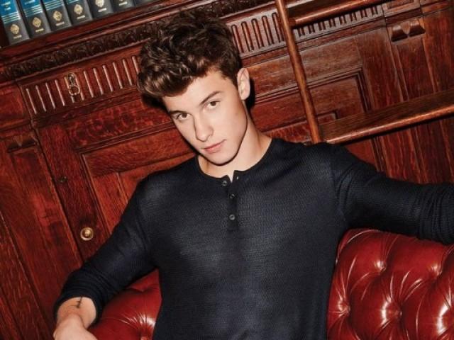 Você realmente conhece Shawn Mendes?