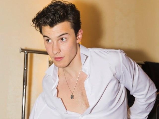 Você conhece Shawn Mendes?