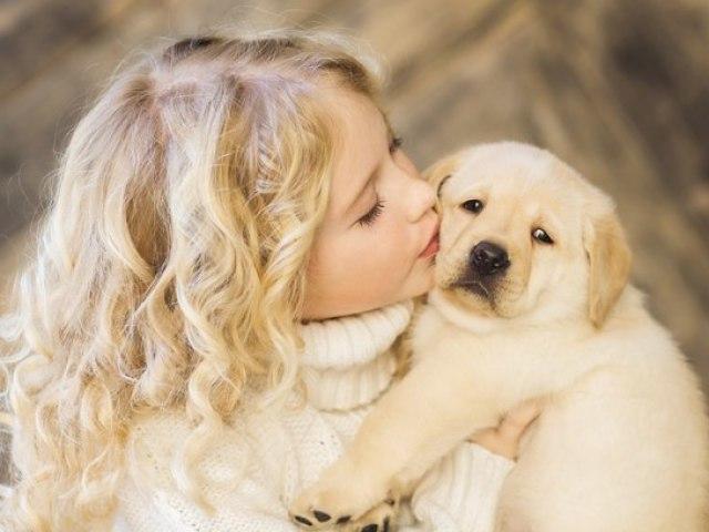 Qual animal de estimação mais combina com a sua personalidade?