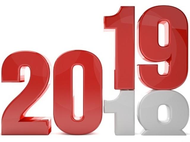 Como vai ser seu ano de 2019?