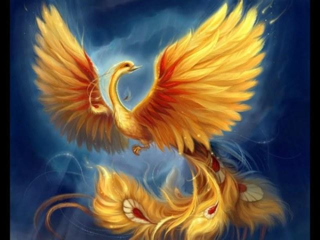 Qual animal místico você seria?