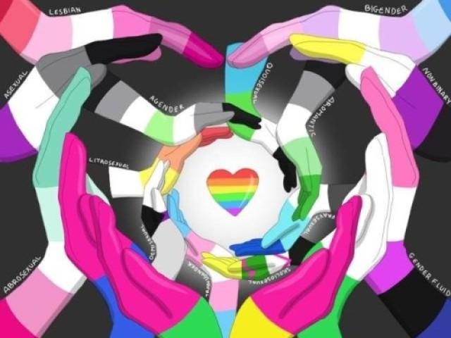 Conhece as bandeiras LGBTQ+ ?