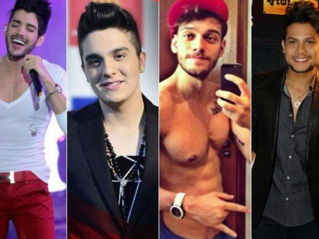 Qual cantor sertanejo namoraria você?