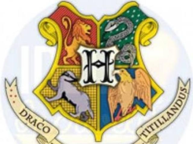 Qual sua casa de hogwarts
