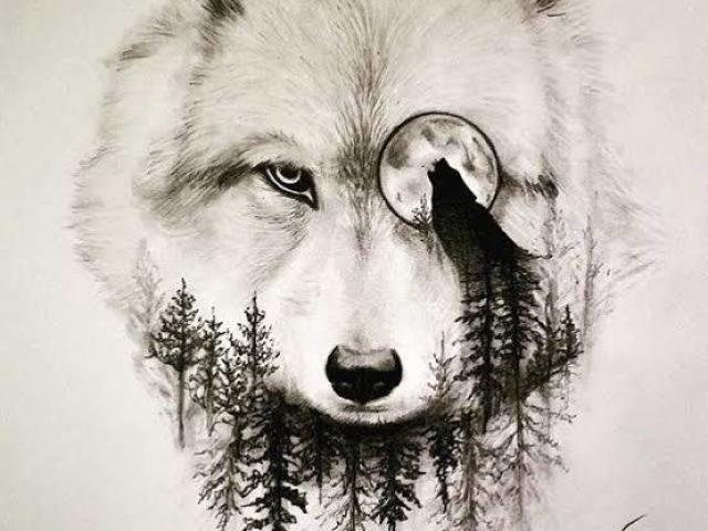 Você sabe mesmo de Teen Wolf?