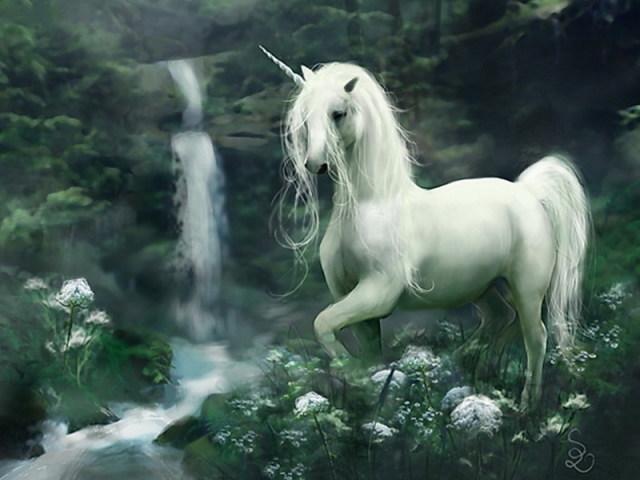 Qual animal místico te define?