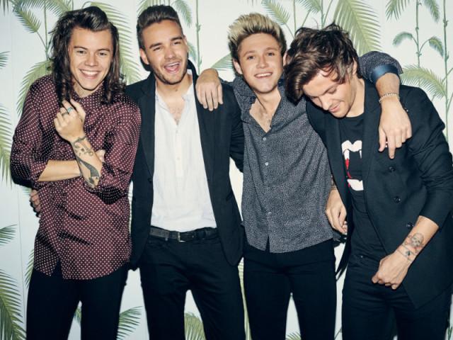 Qual dos meninos da One Direction você namoraria?