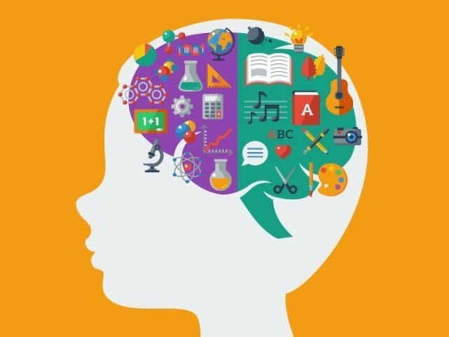 Qual o lado dominante do seu cérebro?