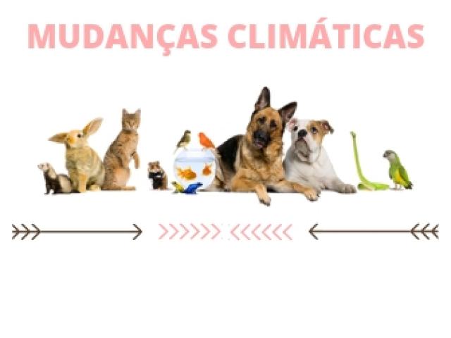 Você sabe o quanto os animais sofrem com as mudanças climáticas?