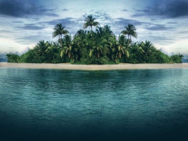 Qual papel você desempenharia em uma ilha deserta?