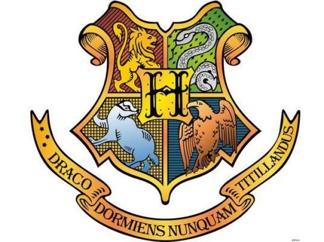 Qual a sua casa de Hogwarts ? ❤💚💛💙