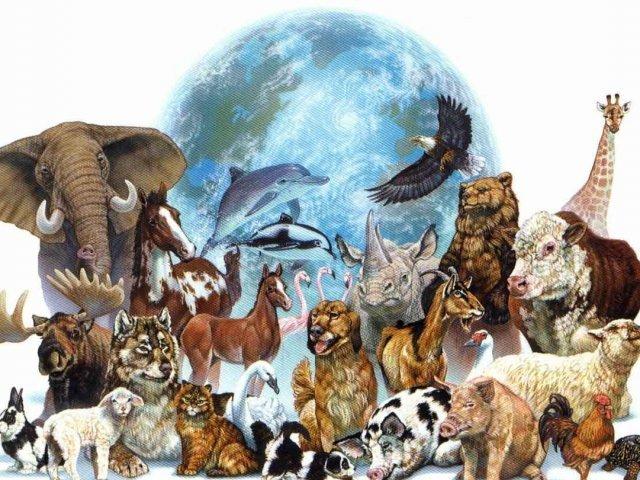 Qual animal está dentro de você?