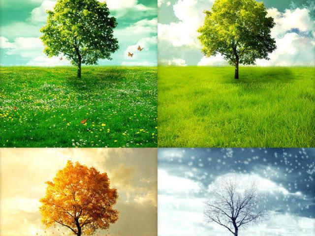 Qual estação do ano você seria?