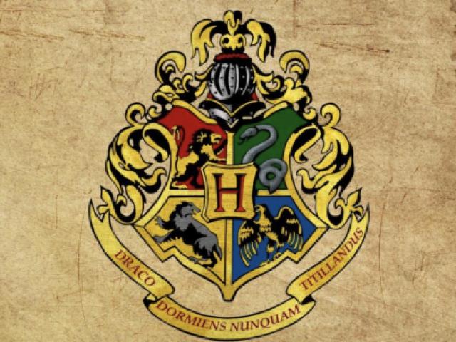 Para qual casa de Hogwarts você seria selecionado?