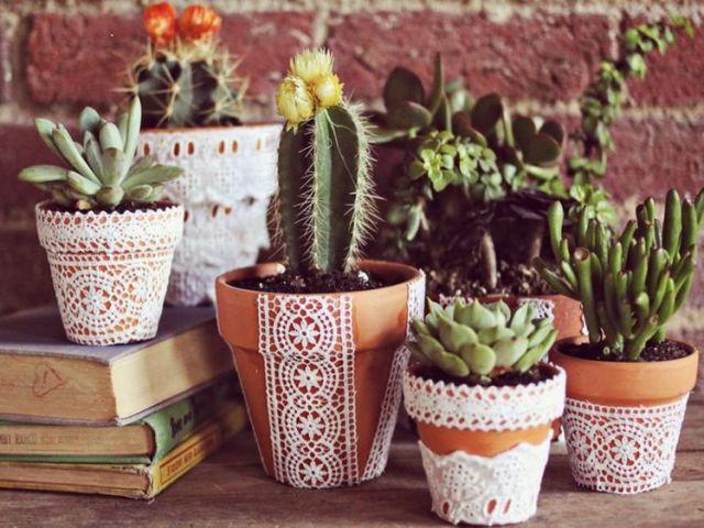 Qual planta combina com você?