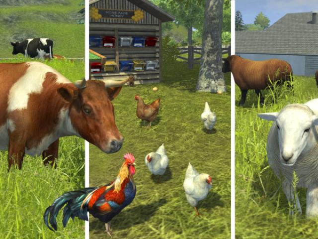 Qual animal de fazenda você é?