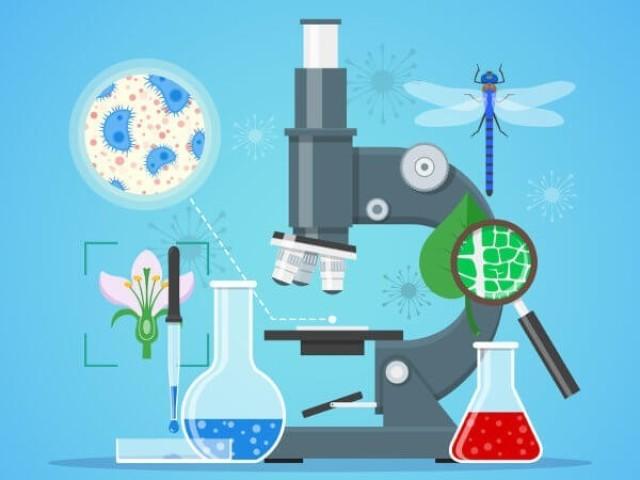 Teste de Biologia!