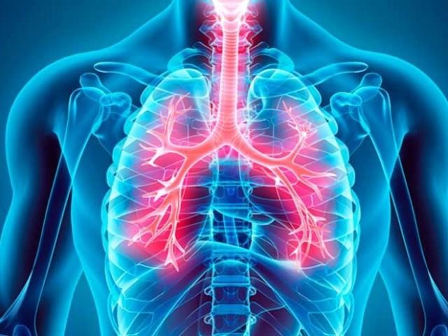 Quanto você sabe sobre o sistema Respiratório?