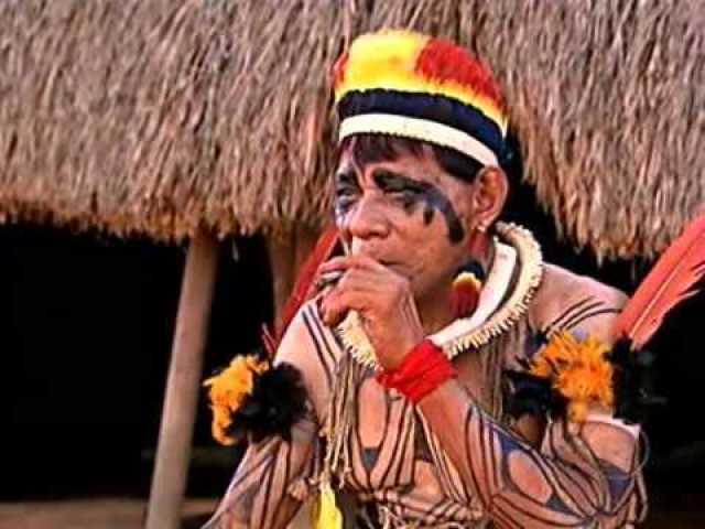 Pin em Indios BRaSileiros