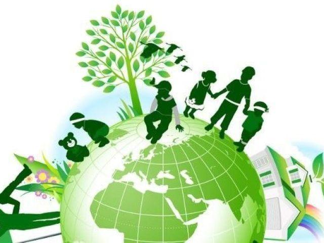 O que você sabe sobre o meio ambiente?