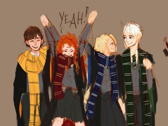 Qual minha casa de Hogwarts?