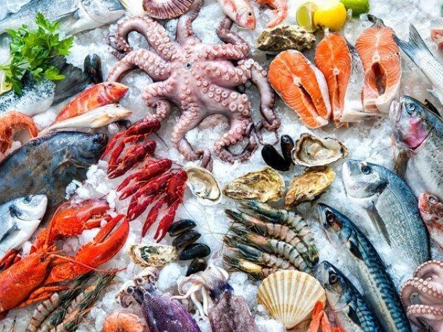 Com qual pescado você se parece?