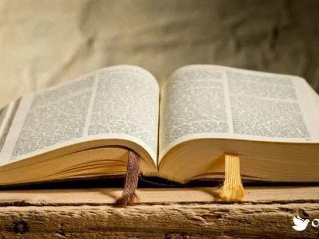O quanto da bíblia você conhece?