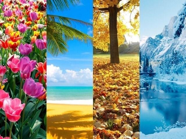Qual estação do ano te representa?