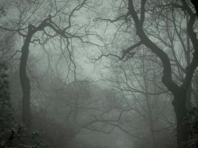 Qual tipo de ser sobrenatural você seria?