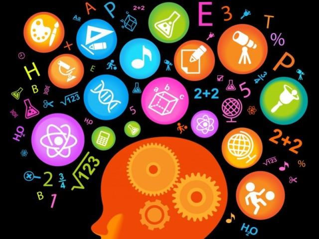 Qual o seu tipo de inteligência?