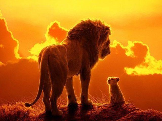Qual personagem de Rei Leão melhor lhe representa?