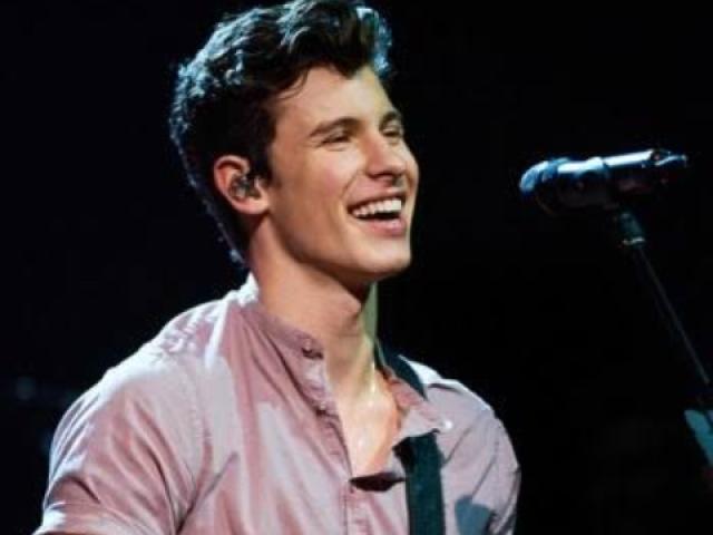 Será que você conhece o cantor Shawn Mendes?