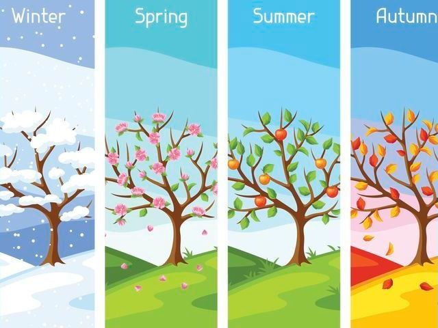 Qual estação do ano você é?