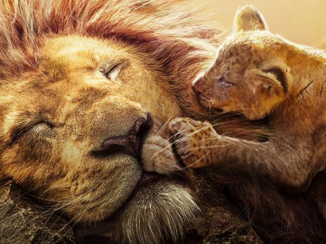 Quem diz essa frase no filme O Rei Leão de 2019?
