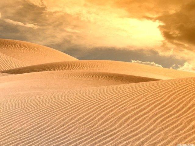 Quanto tempo você sobreviveria no deserto?