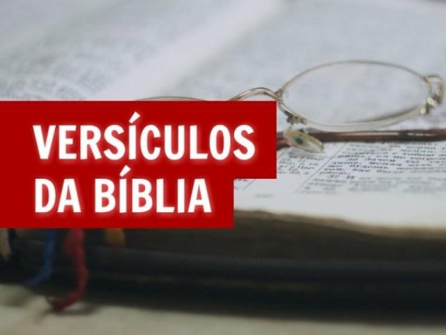 Quiz: Versículos e Salmos da Bíblia!