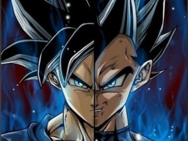 Você seria Goku ou Vegeta?