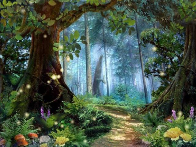 Siga o caminho da floresta, qual sua história no mundo da magia?