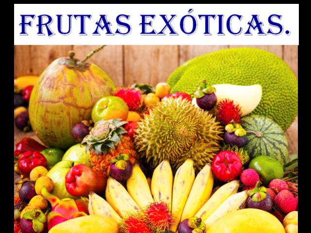 Será que você conhece algumas Frutas Exóticas?