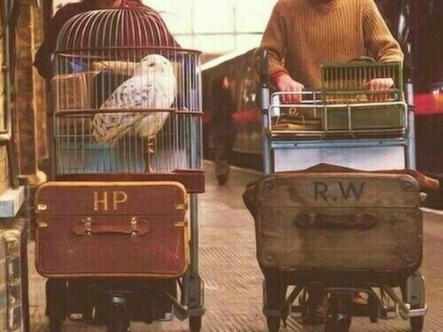 Você sabe qual é a casa de cada personagem de Harry Potter?