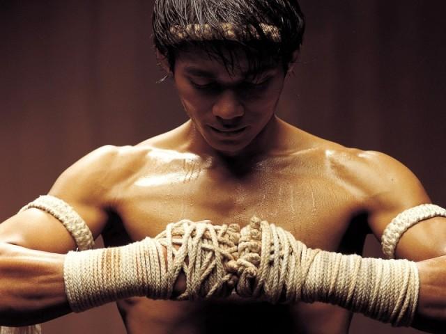 Qual arte marcial mais combina com você