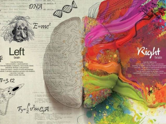 Qual é a zona dominante do seu cérebro?
