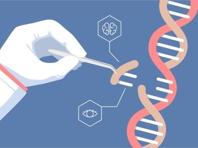 O quanto você sabe sobre Genética?