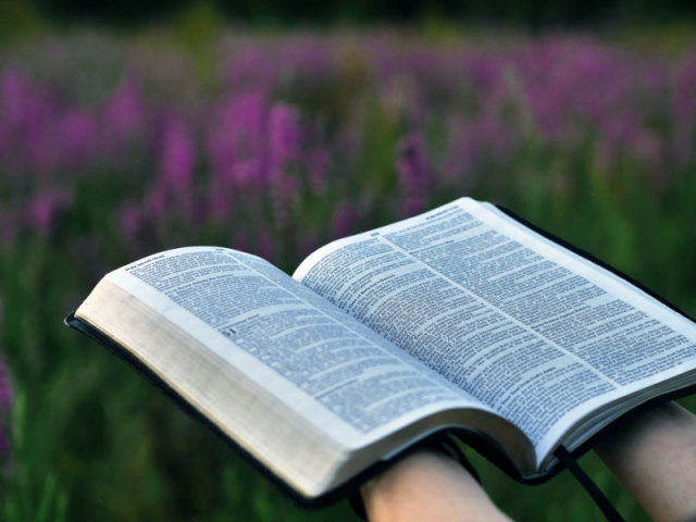 Você conhece os salmos da Bíblia?