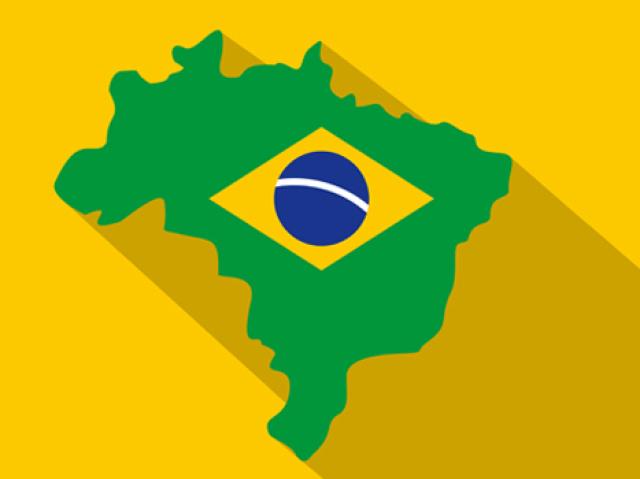 Você conhece os mamíferos brasileiros?