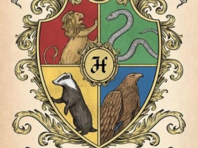 Qual Seria a Casa de Hogwarts ideal para você?