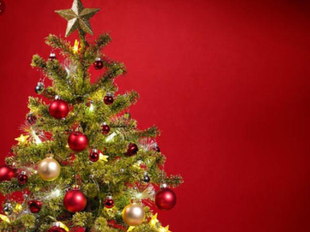 Qual é sua comida favorita no Natal?