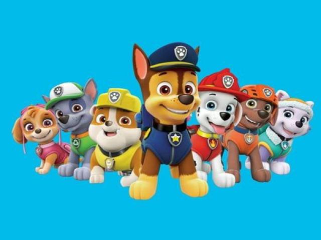 Você conhece o básico de patrulha canina?